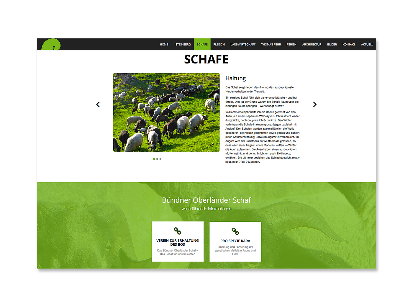 Website, Thomas Fehr, Bauer und Architekt